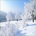 Jetzt schon an den Winter denken